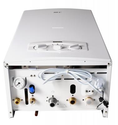Газовый настенный котел AQUILA L1P18-F21S(M)