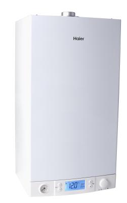 Газовый настенный котел AQUILA L1P30-F21S(T)